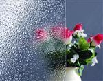 淋浴房玻璃 卫浴玻璃 钢化玻璃 喷漆 4mm5mm6mm8m