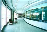 超大规格幕墙玻璃