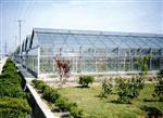 秦皇島溫室中空玻璃17mm