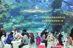 中国鱼缸制造商