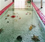钢化玻璃地板