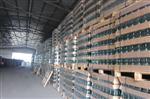 山东联兴玻璃供应全国各地普白、清白、翠绿色玻璃瓶、白酒瓶