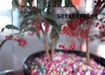 深圳AG千亿国际966