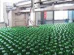 供应河北、张家口、承德、廊坊、地区玻璃瓶、调味品瓶、绿色酒瓶