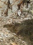 石英砂供应