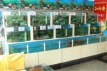 海鲜水产市场制冷海鲜池定做