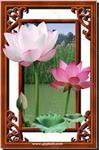 彩釉艺术玻璃挂画