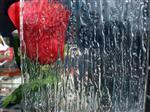 河北压花玻璃