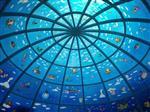 北京幼儿园双曲面玻璃加工