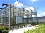 溫室大棚玻璃