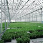 暖房蔬菜大棚玻璃