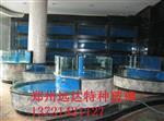 郑州热弯玻璃