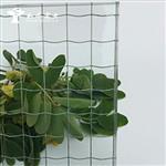 进口高透方形夹铁丝玻璃 安全 防爆