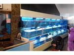 饭店海鲜鱼池设计制作