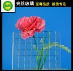 广州夹丝玻璃厂家价格
