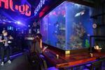 南海新都会玻璃鱼缸定做,广佛路新都会亚克力玻璃观赏鱼缸定制