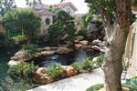 广州白云清洗别墅锦鲤鱼池,假山鱼池假山喷泉怎么清洗换水