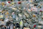 广东香港开奖现场结果直播瓶回收