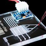 温度传感器玻璃,指纹识别传感器玻璃 玻璃芯片传感器