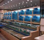 广州土建海鲜池、海鲜池厂家、超市海鲜池、餐饮海鲜池