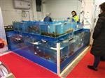 广州定做海鲜玻璃鱼缸-定做海鲜玻璃缸养虾蟹