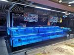 广州越秀饭店海鲜鱼缸价格_饭店海鲜鱼缸批发
