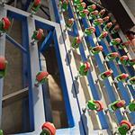 快速钢化玻璃磨边机 简易快速玻璃磨边机 钢化磨边机除膜一体机