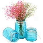 徐州花瓶 世纪花瓶 家居玻璃瓶 彩色