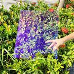 紫蓝色镀膜AR玻璃 近乎全透明的AR玻璃 98%透光率AR玻
