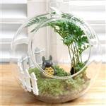 玻璃花插 透明花瓶 花瓶 摆件 家居装饰品 玻璃制品 办公桌花瓶