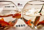 玻璃连体鱼缸005