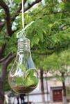 灯泡型花瓶013
