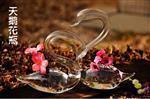 天鹅花瓶120