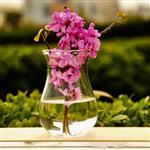 别致玻璃花瓶125