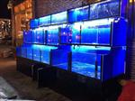 中山水族箱定制|中山专业生产水族箱|中山订做龙海鲜鱼池