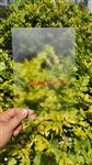 安徽银东专业生产蚀刻玻璃 防眩光玻璃 AG玻璃